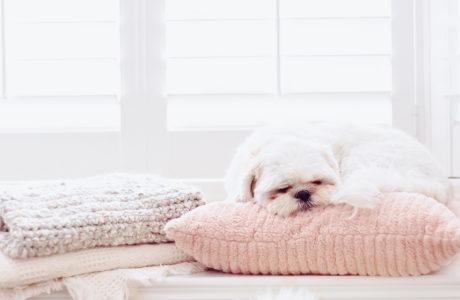 Five tips to improve sleep